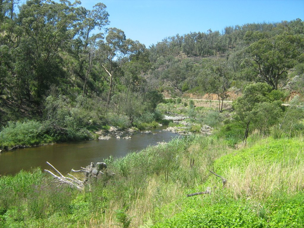 Tambo River near Ensay, Vic
