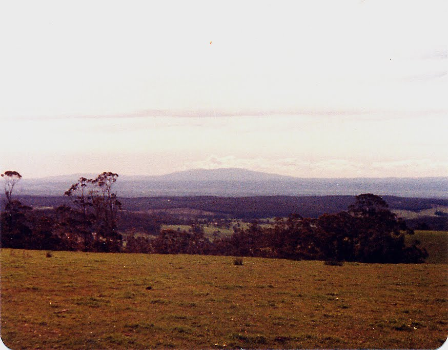 Looking Nth from Willung sth_1980
