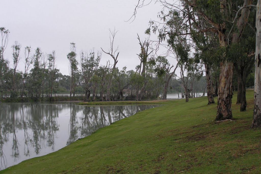 Riverbank at Berri