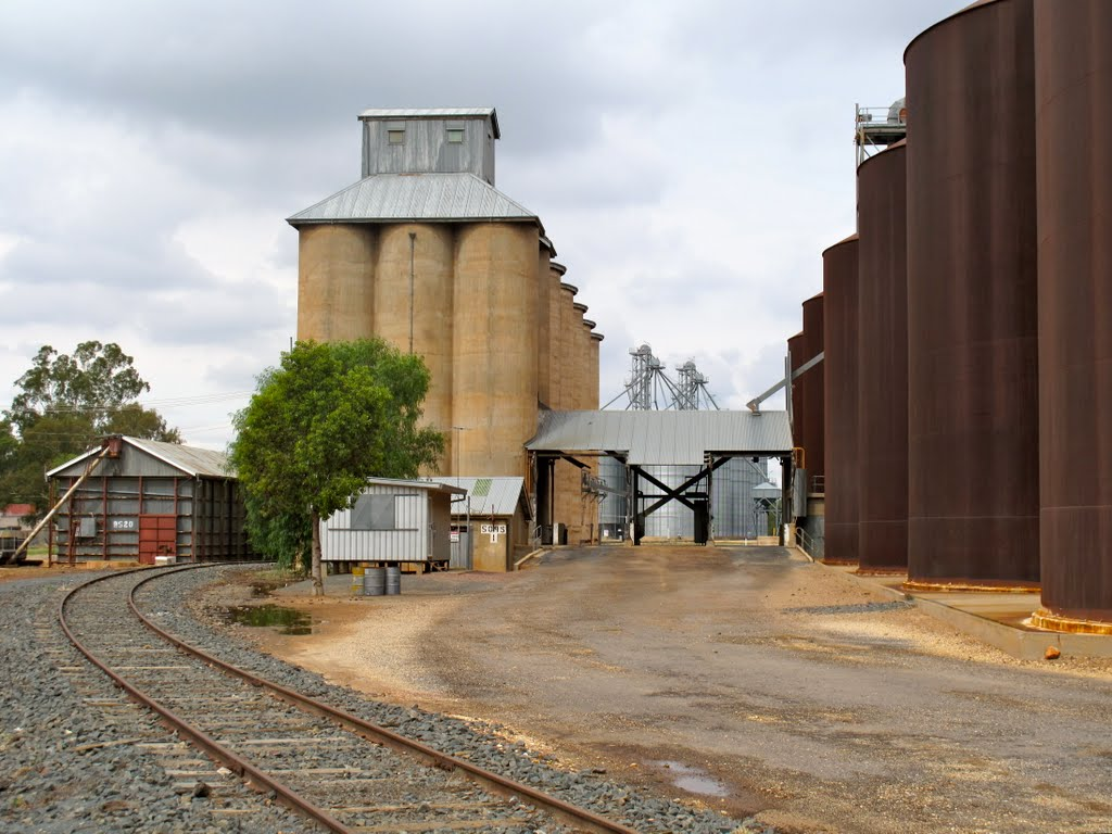 What is the collective noun for a group of Grain Silos? A Harvest?