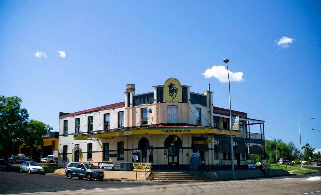 Thoroughbred Hotel - Scone, NSW, Australia