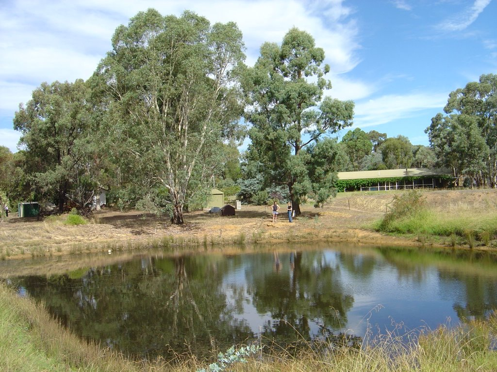 Andrews Yabby Pond (before the drought)