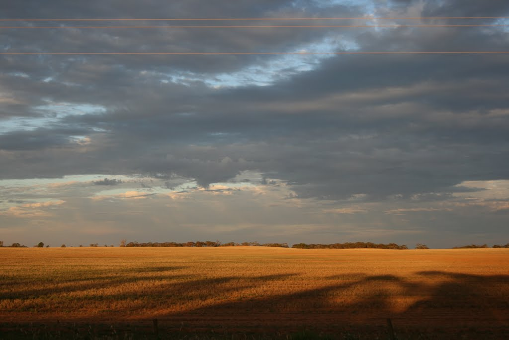 Mallee Sunset 1