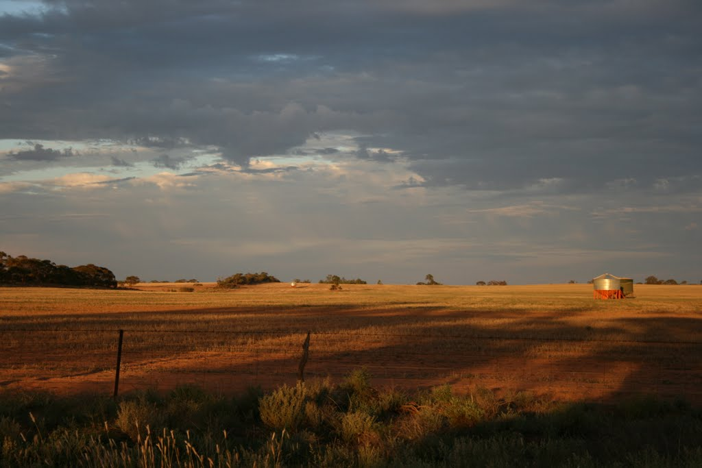 Mallee Sunset 2