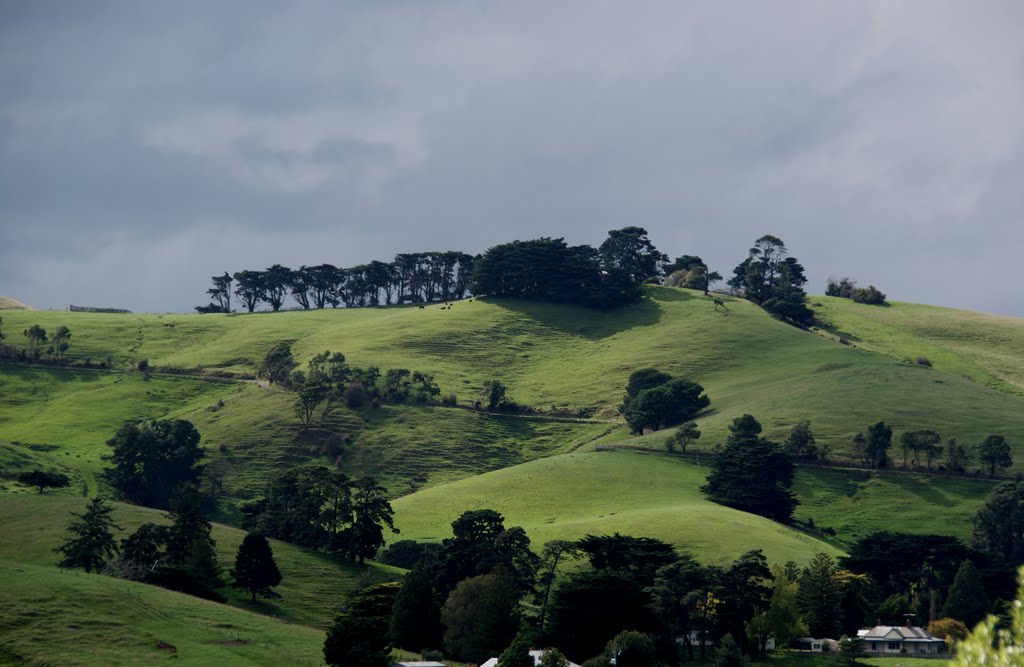 In the green heart of South Gippsland, Victoria