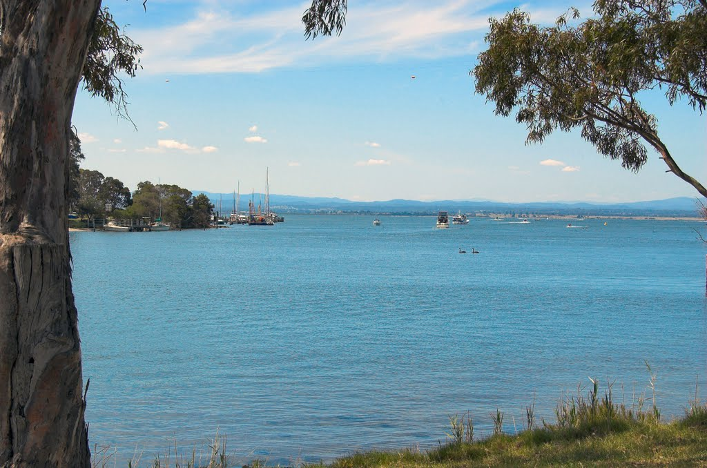 Lake King from northern end of McMillan Strait, Paynesville