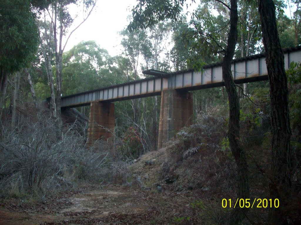 Rail bridge over Hamilton River, Collie WA