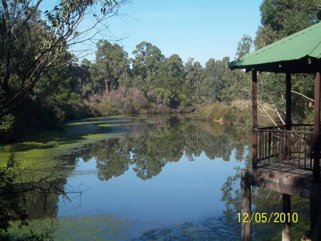 The Collie River at Jack Mears Park, Collie WA