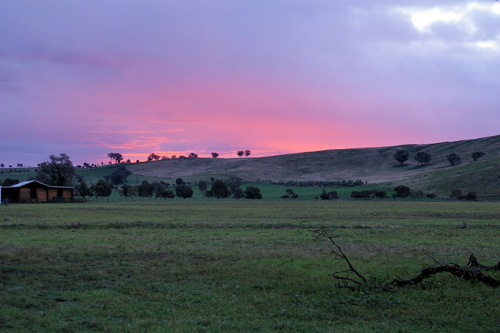 Evening Glow outside Wagga Wagga