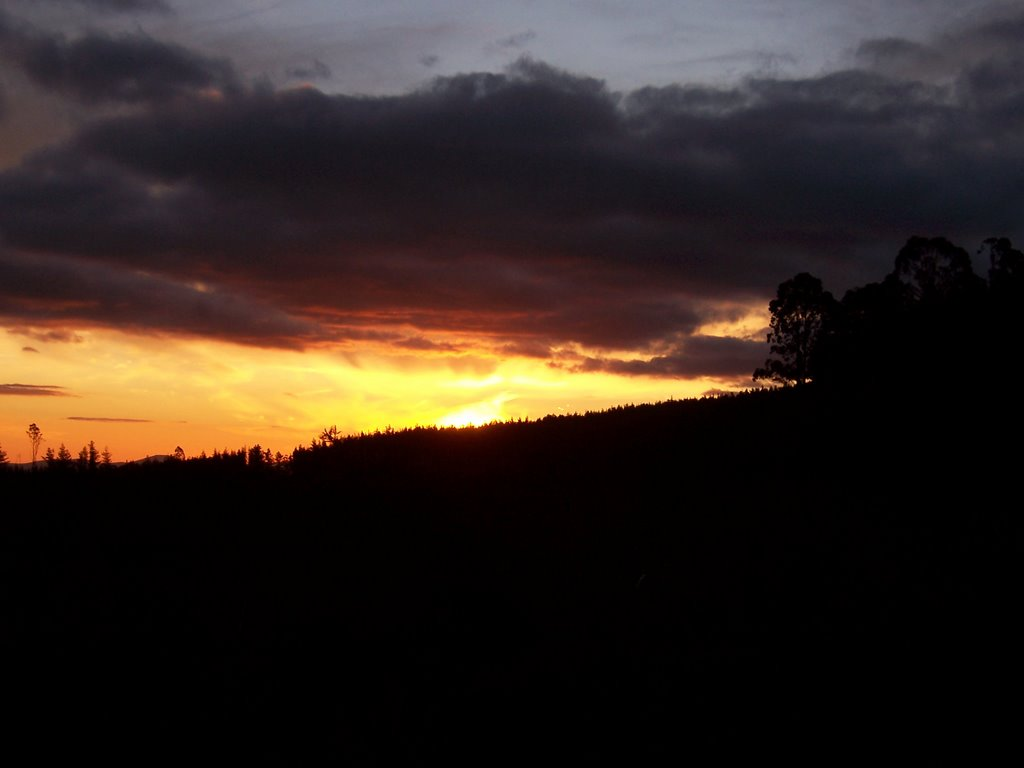 Sunset near Nundle State Forest