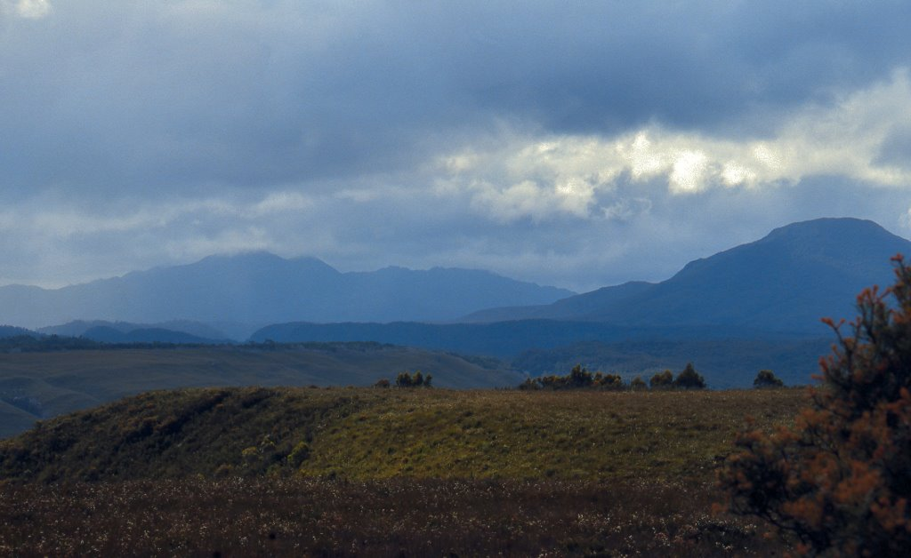 Mt Agnew and Mt Zeehan from Professor Range