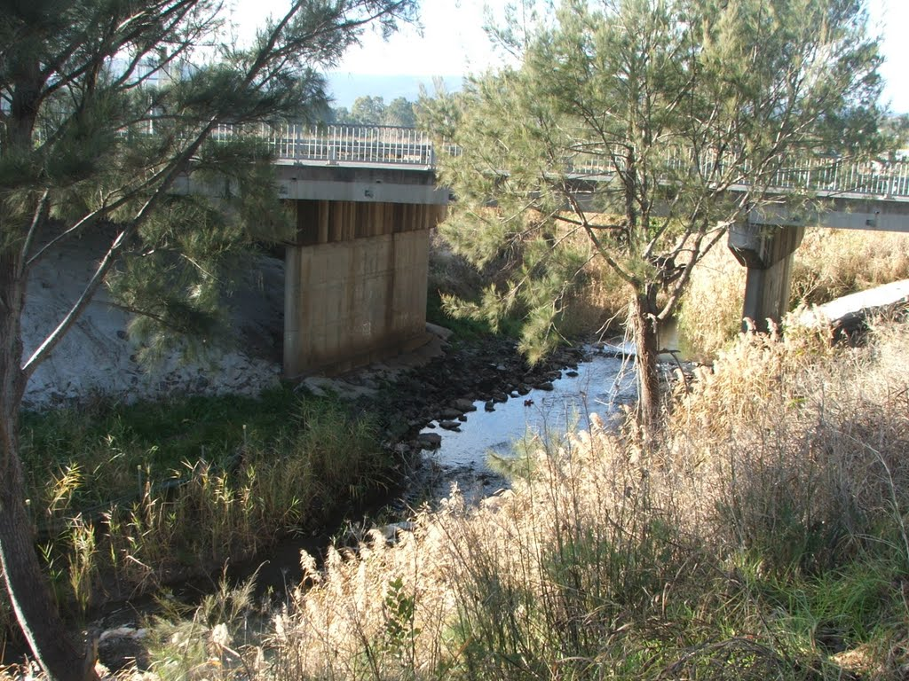 Condamine River-Killarney bridge
