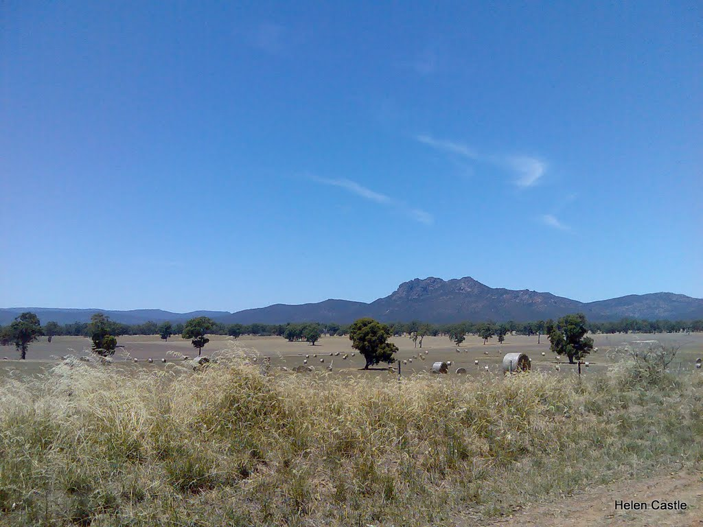 The Grampians from a distance January 2010