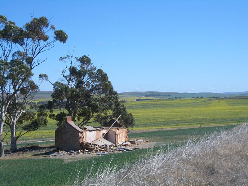 Ruined house, near Bundaleer Channels and Spalding