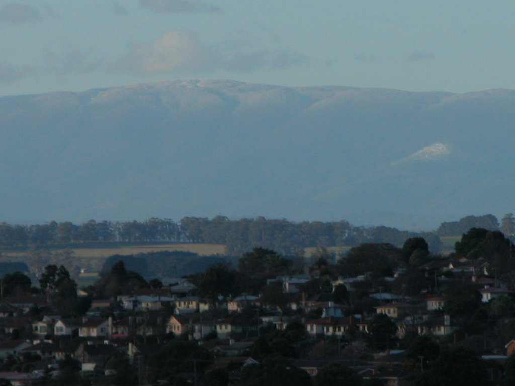 Snow on Mt Baw Baw from Warragul
