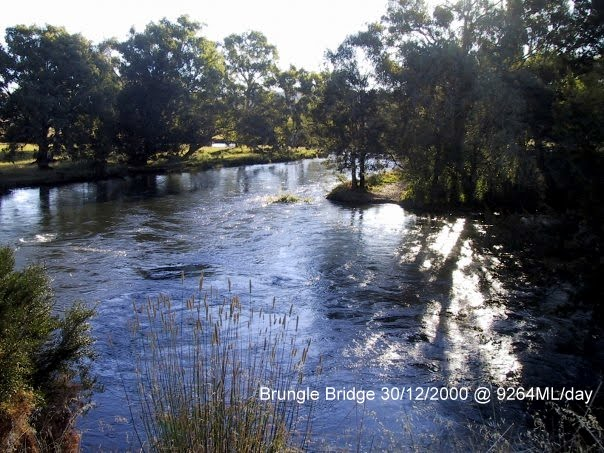 Tumut River at Brungle Bridge