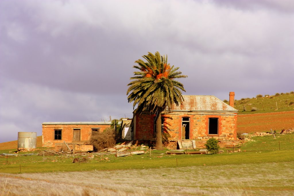 Abandoned farm house on the outskirts of Eudunda.