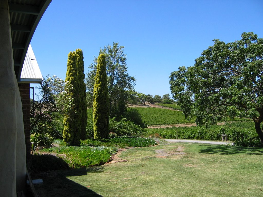 Peter Lehmann Vineyard