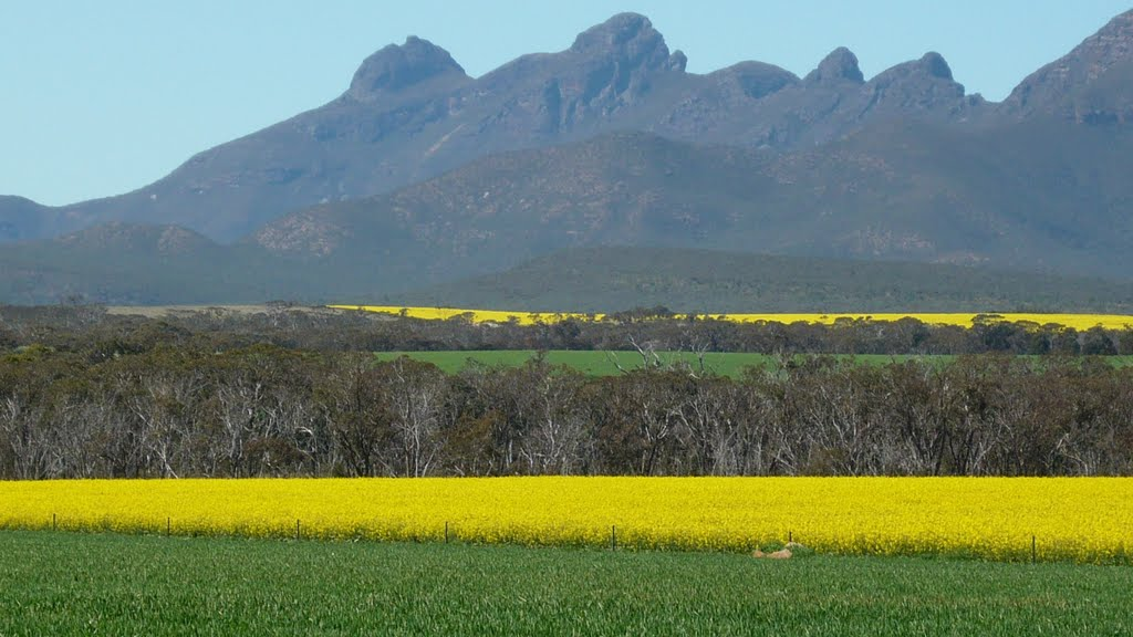 STIRLING RANGES  W.A.   please enlarge