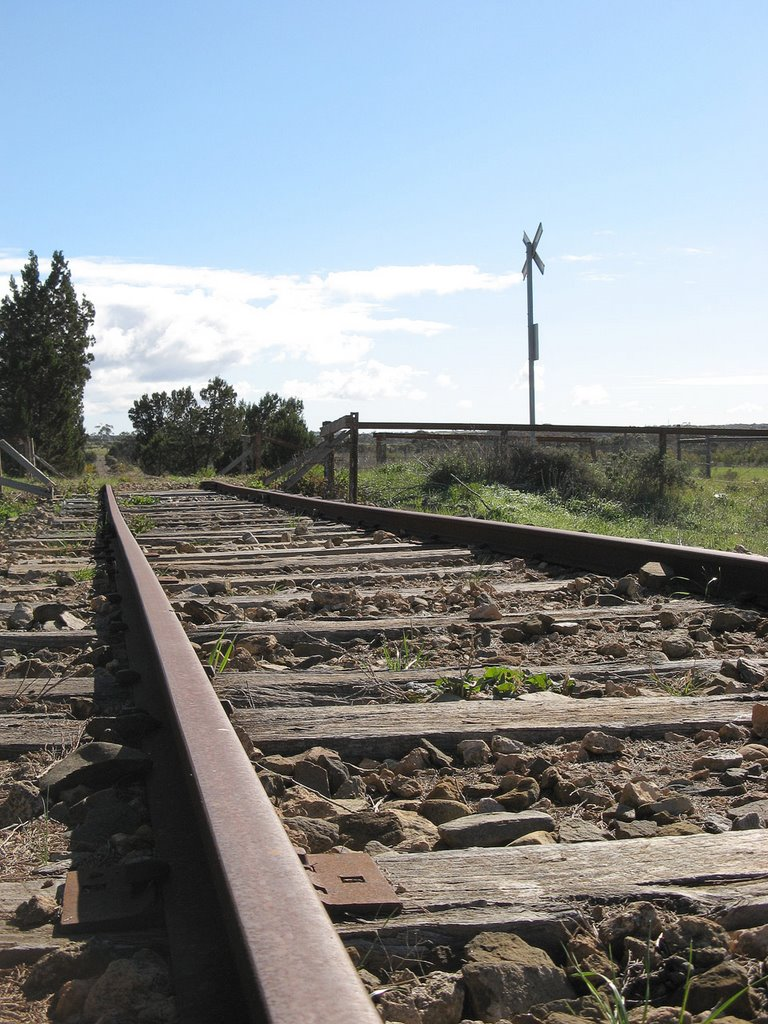 Disused railway, near Monarto Zoological Park