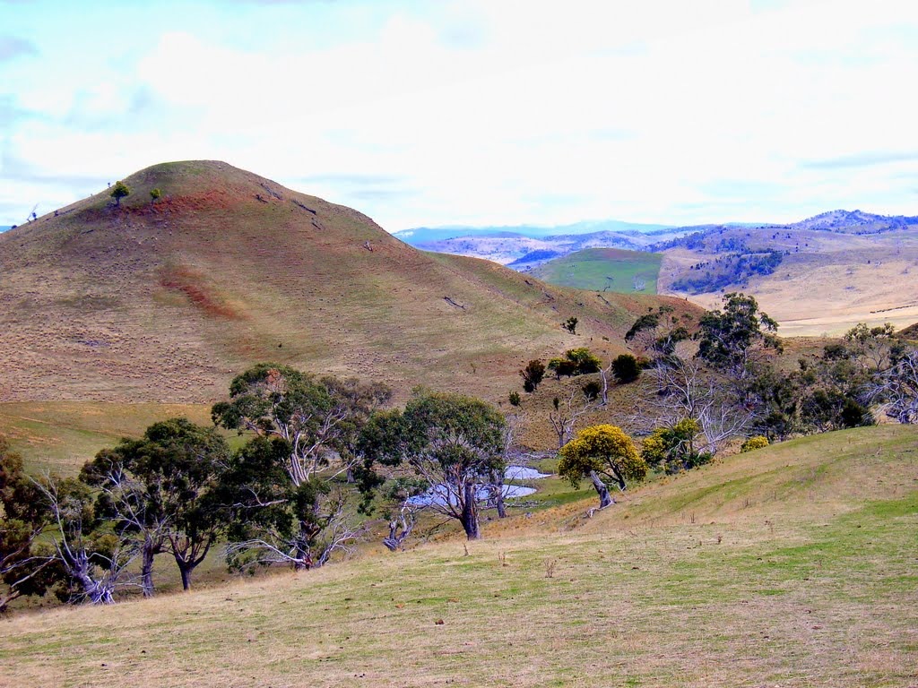 Central Highlands, typical bald hills grazing country.......240