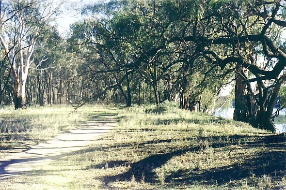 Happy Valley Landing, Robinvale State Forest