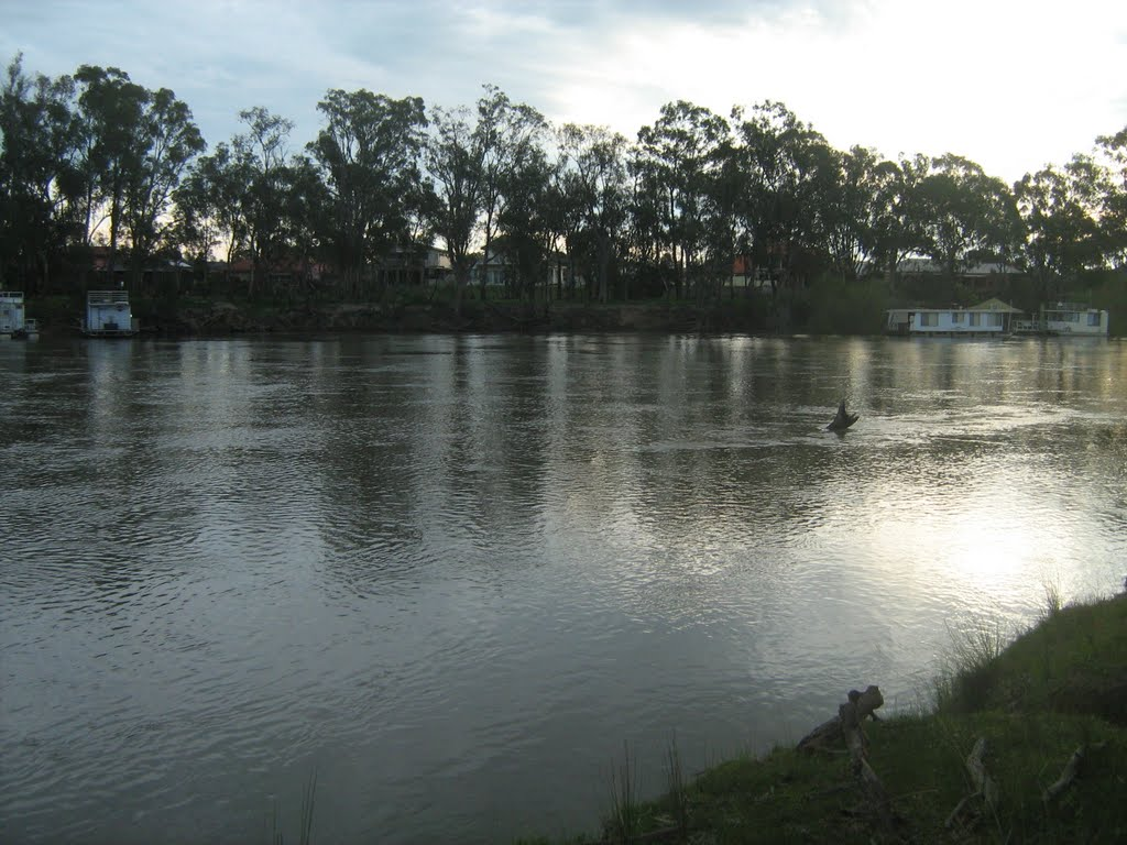 Houseboats on Murray River near Cobram, Vic