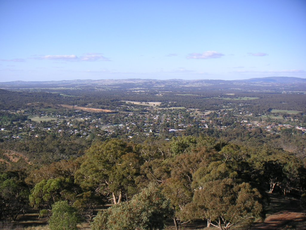 View from Mt Tarrengower - Maldon