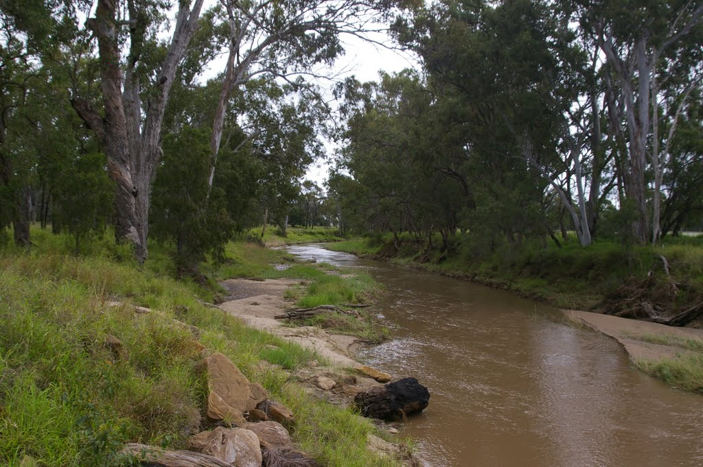 Creek near Guluguba