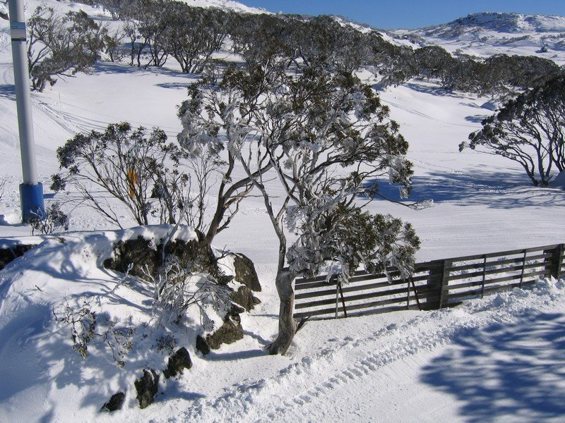 Perisher Blue in Winter