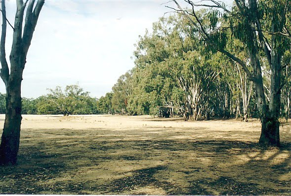 Cobram State Forest - Tocumwal: Bouchiers Beach