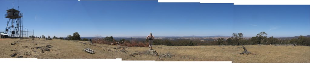 Panorama from fire watch tower, Stuart Mill