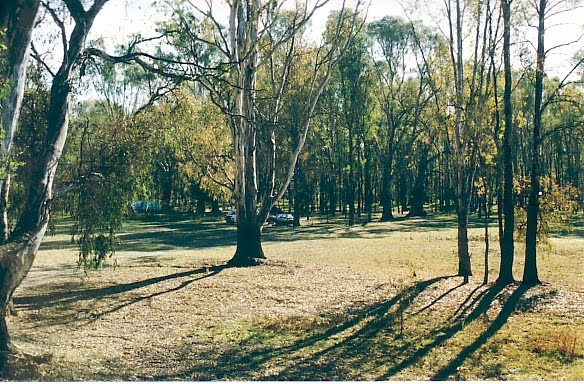 Cobram Regional Park: Scotts Beach