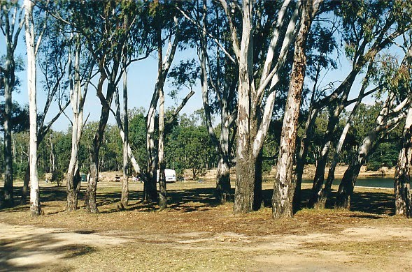 Murray Rv Reserves: Bourkes Bend