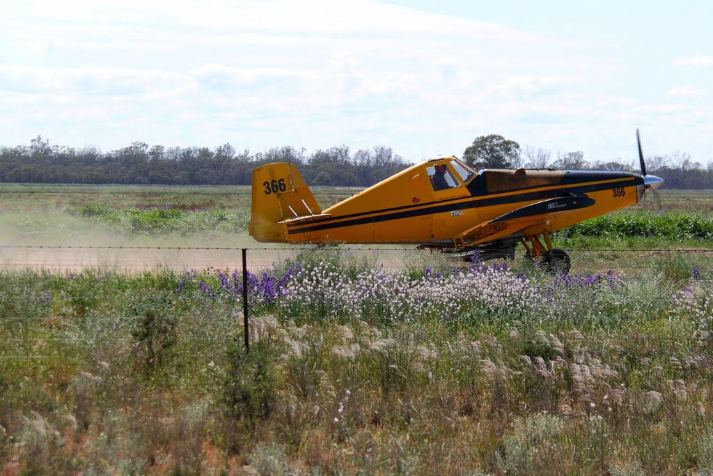 Crop Duster taking off to do some work...