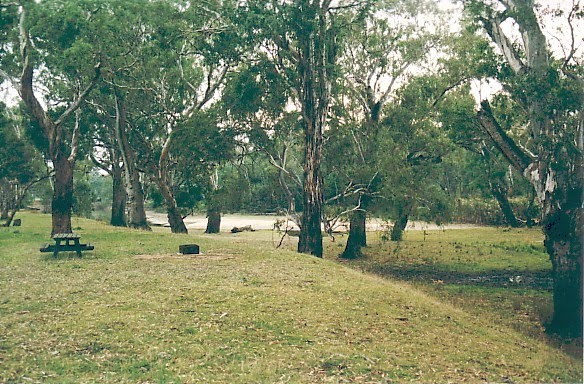 Murray River Reserves - Taylors Bend