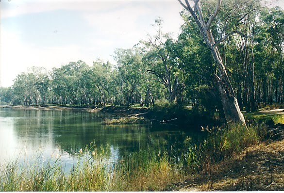 Murray River Reserves - Granthams Bend