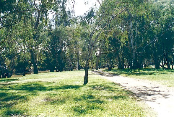 Newbridge River Reserve camp ground