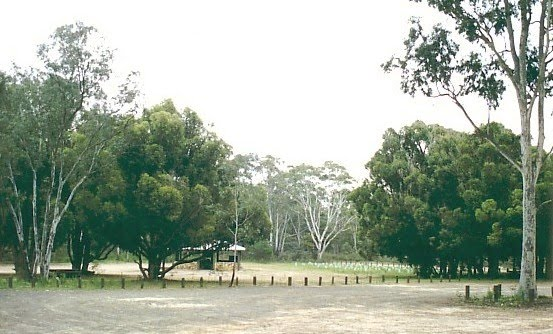 Heathcote-Greytown National Park: Dargile Plantation camp ground
