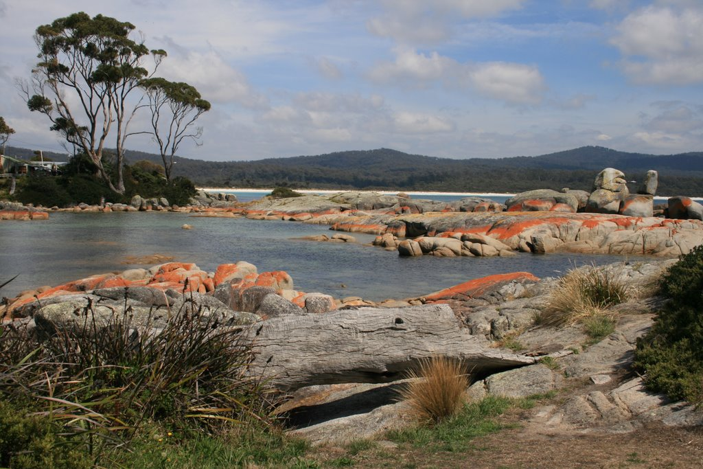 Bay of Fires near Binalong Bay / Tas