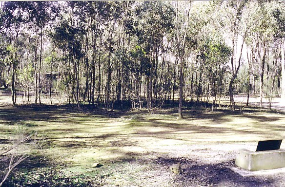 Paddy Ranges State Park: Karri Camp Ground