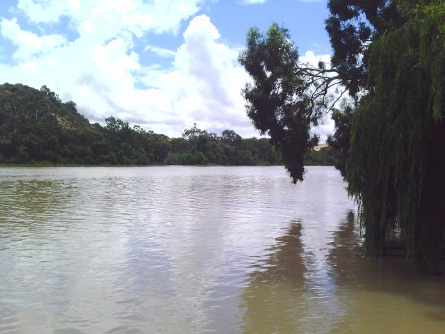 Murray River (Bow Hill)