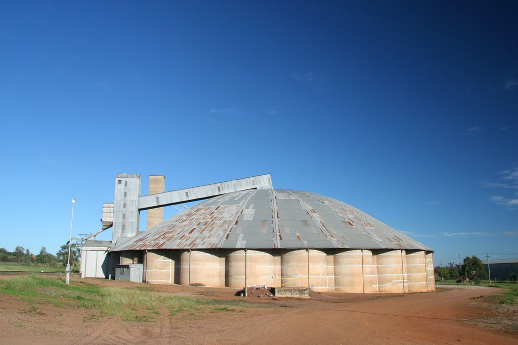 Wheat Silos, Gunnedah, NSW
