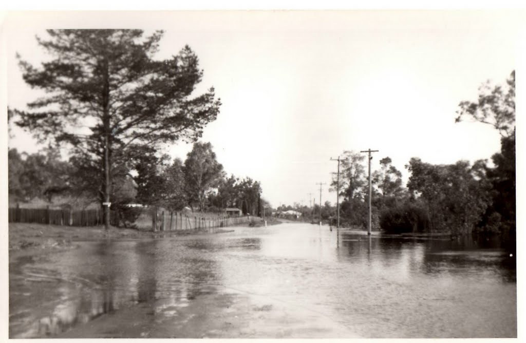 Collie Floods ~ 1964, Palmer Road looking SW towards Paull St