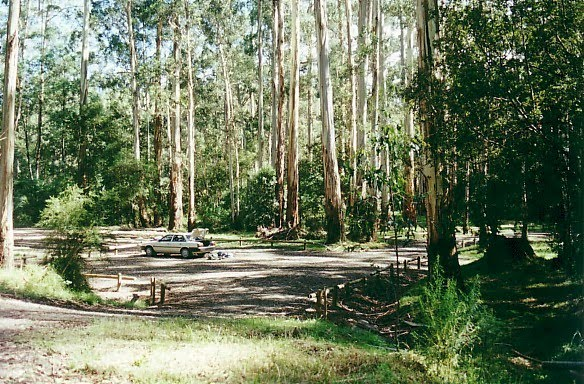 Tanjil-Tyres State Forest; Tyers Junction bush camp
