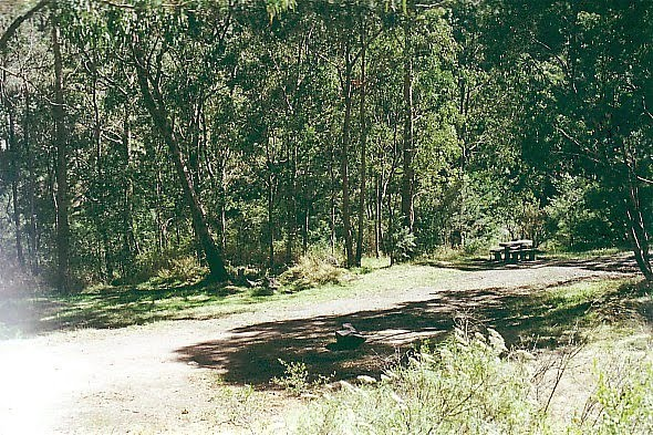 Alpine National Park; Platypus Camp Ground,