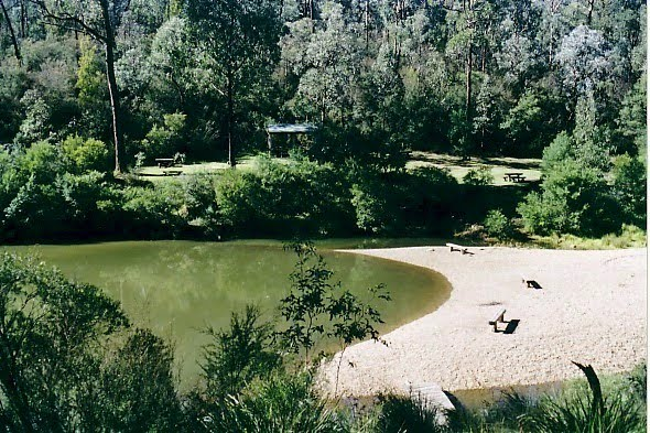 Briagolong State Forest, Freestone Creek: Blue Pool