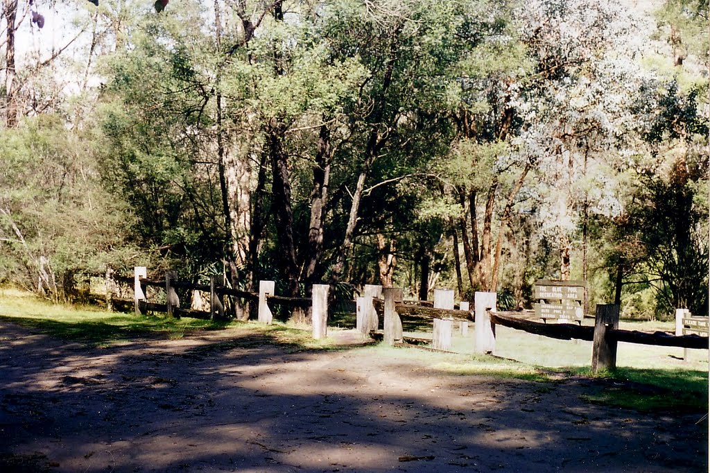 Briagolong State Forest, Freestone Creek: Blue Pool Camp Ground