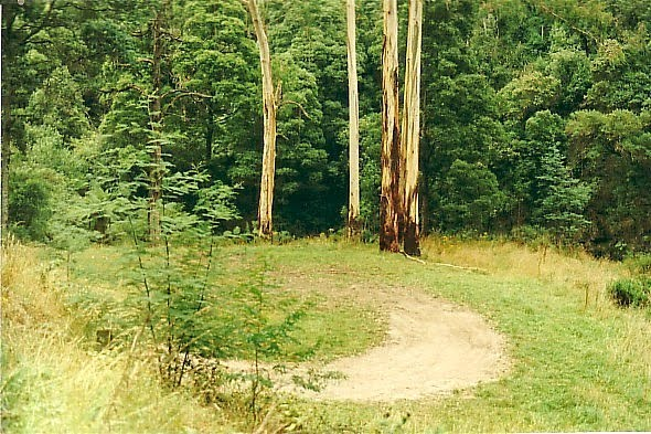 Morwell State Forest, Morwell Rv Camp 3