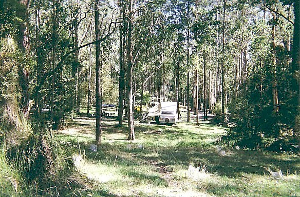 Otway State Forest; Lake Elizabeth camp ground